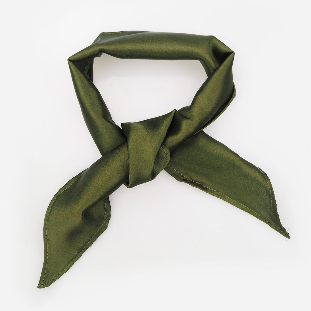 Image of EDIE Green Silk Neck Tie Choker