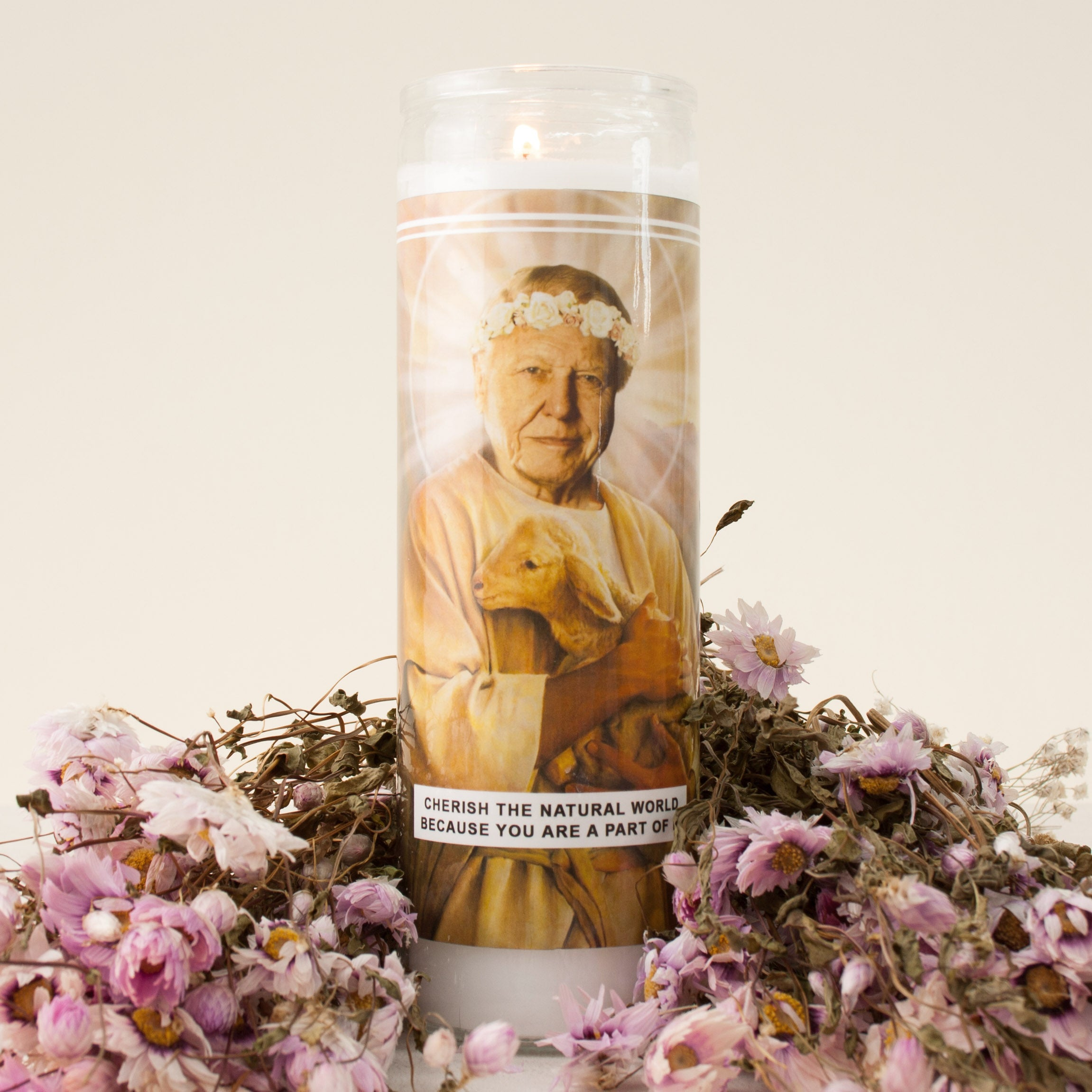 Image of Saint Attenborough Prayer Candle