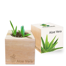 Load image into Gallery viewer, Grow Kit - Aloe Vera
