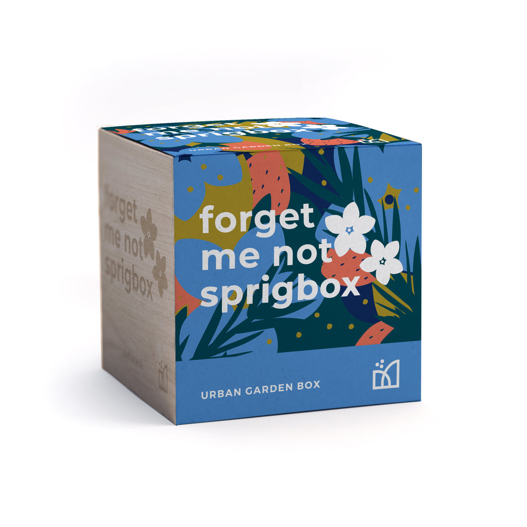 Grow Kit - Forget Me Not