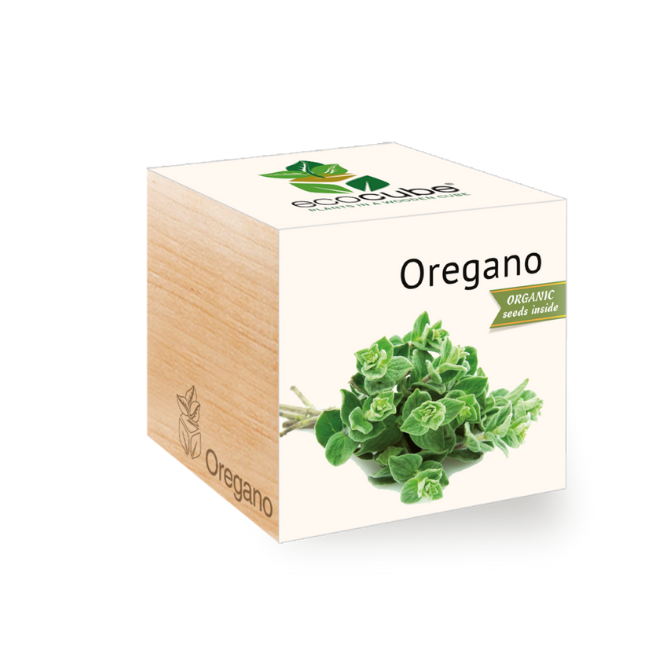 Grow Kit - Oregano