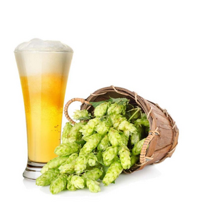 Grow Kit - Brewer's Hop