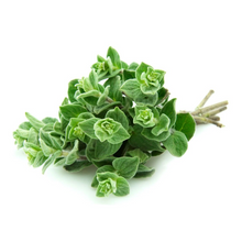Load image into Gallery viewer, Grow Kit - Oregano
