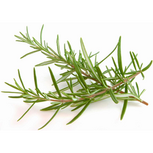 Load image into Gallery viewer, Grow Kit - Rosemary