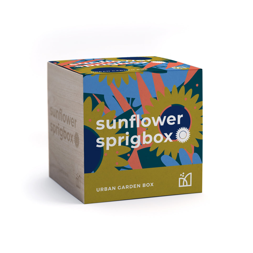 Grow Kit - Sunflower