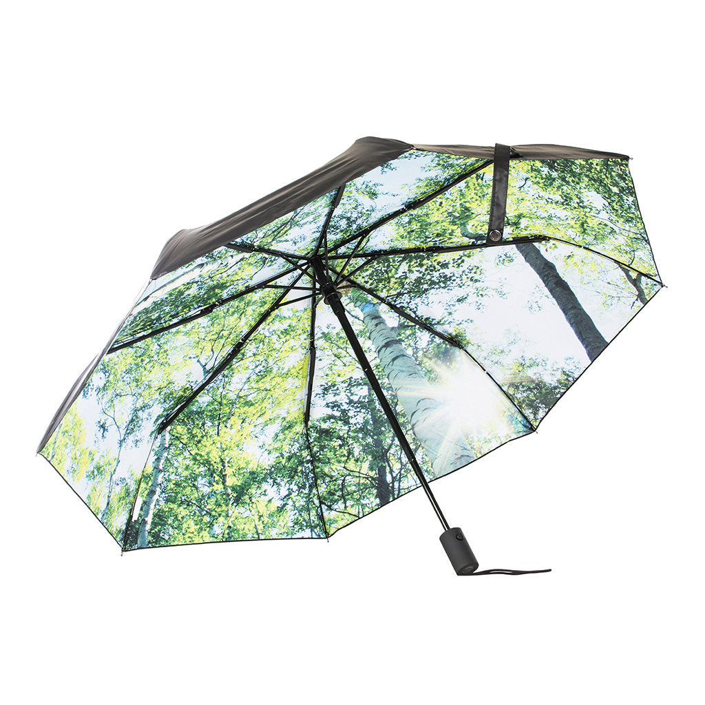 Umbrella - Forest