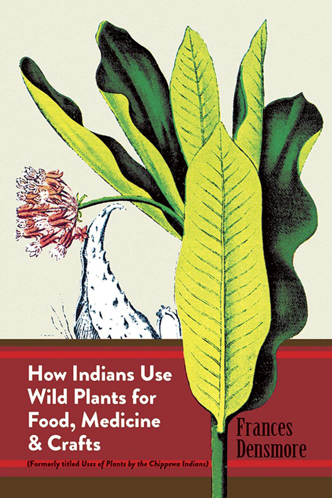 How Indians Use Wild Plants for Food, Medicine & Crafts [Frances Densmore]