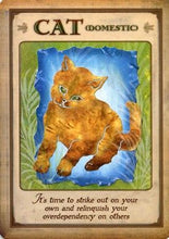 Load image into Gallery viewer, Messages From Your Animal Spirit Guides Cards [Steven D. Farmer]