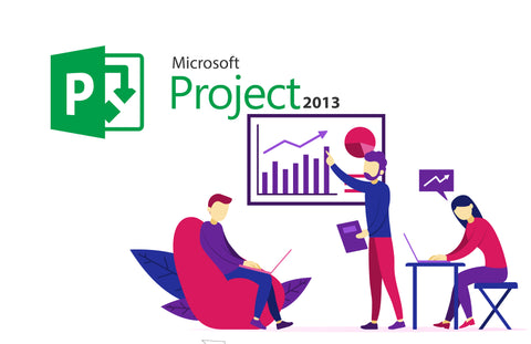 Microsoft<sup>®</sup>  Project 2013