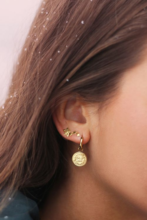 Earrings stud