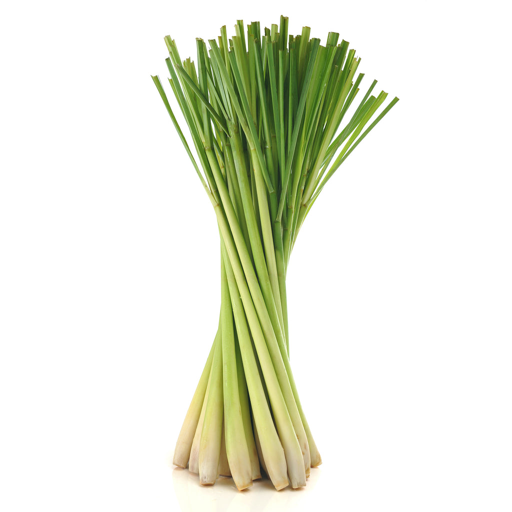 Lemon Grass - Capital Wholesalers