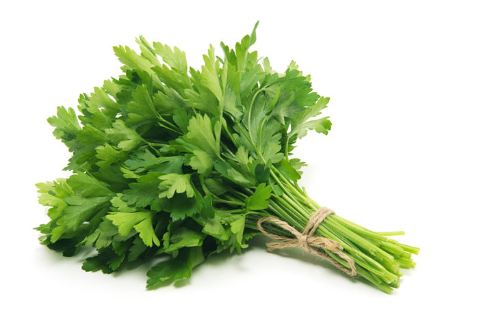 Flat Parsley - Capital Wholesalers