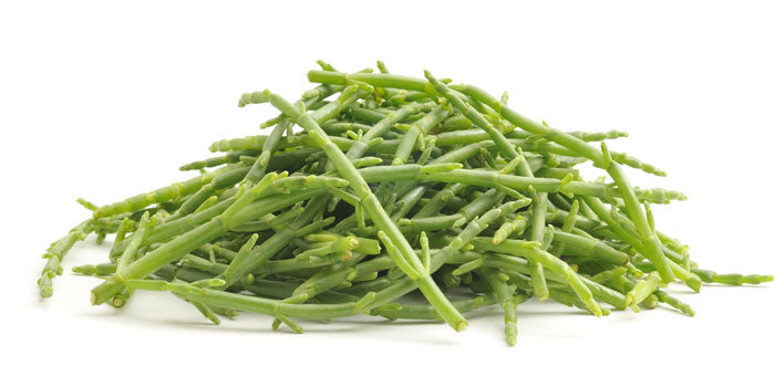 Samphire - Capital Wholesalers
