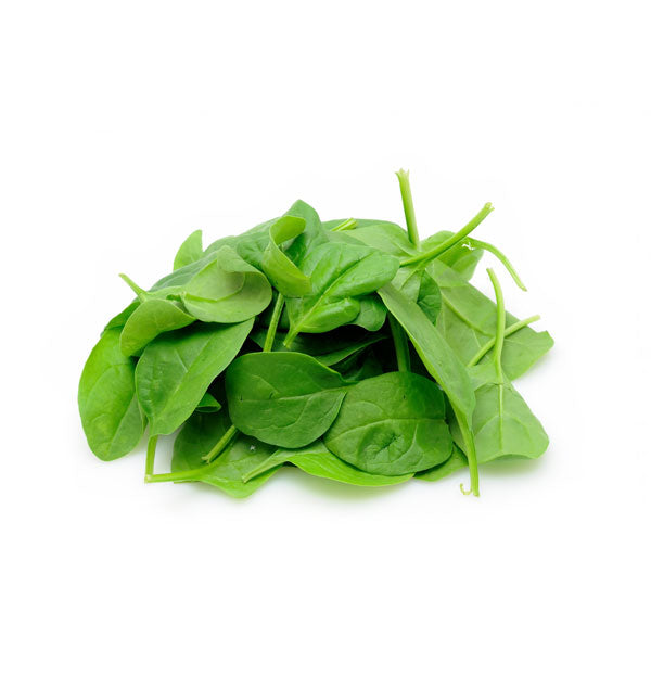 Baby Spinach - Capital Wholesalers