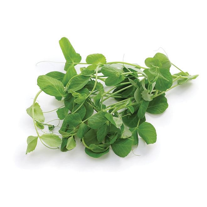 Micro Pea Shoot, 100g