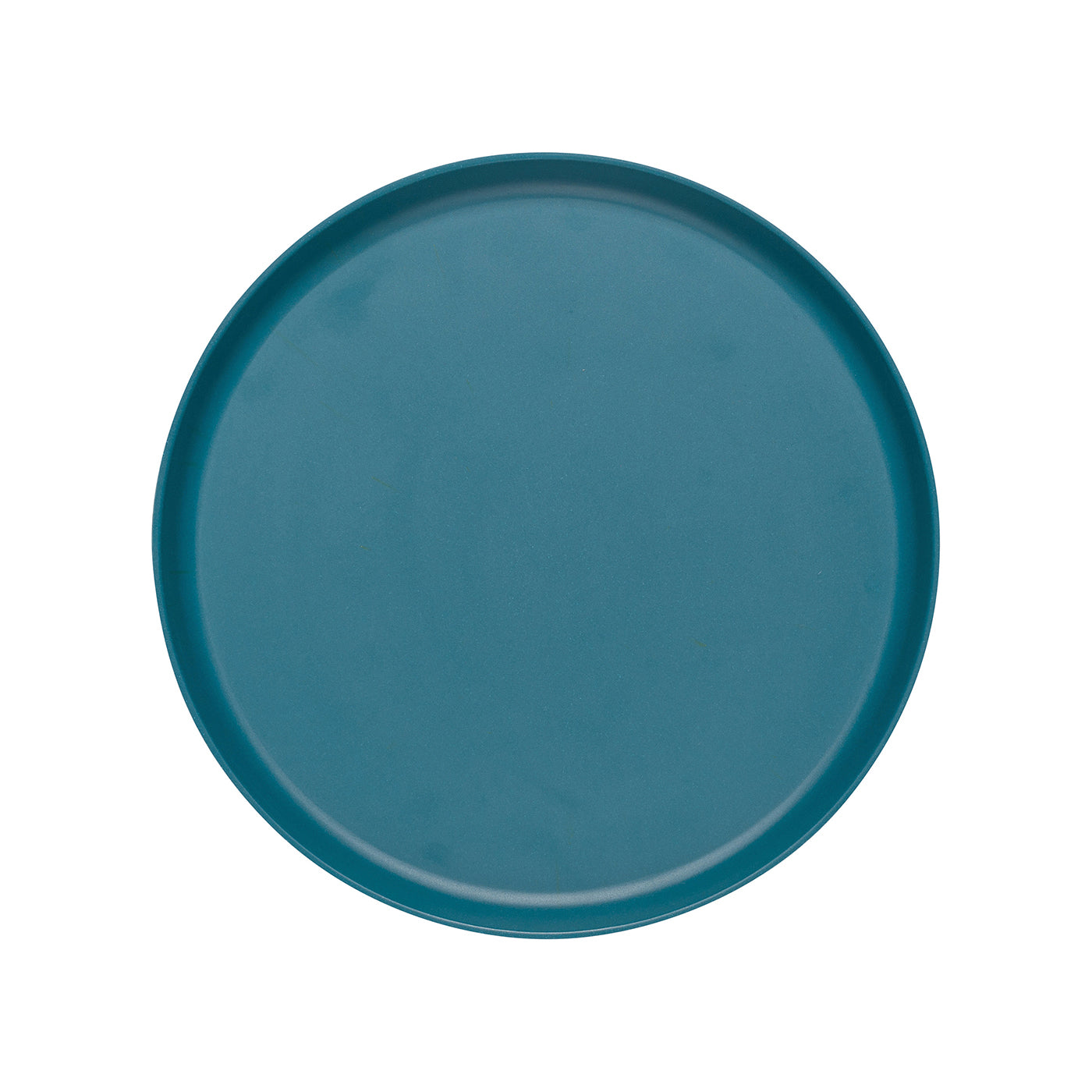 Fiesta Ecologie Dinner Plates Set of 4