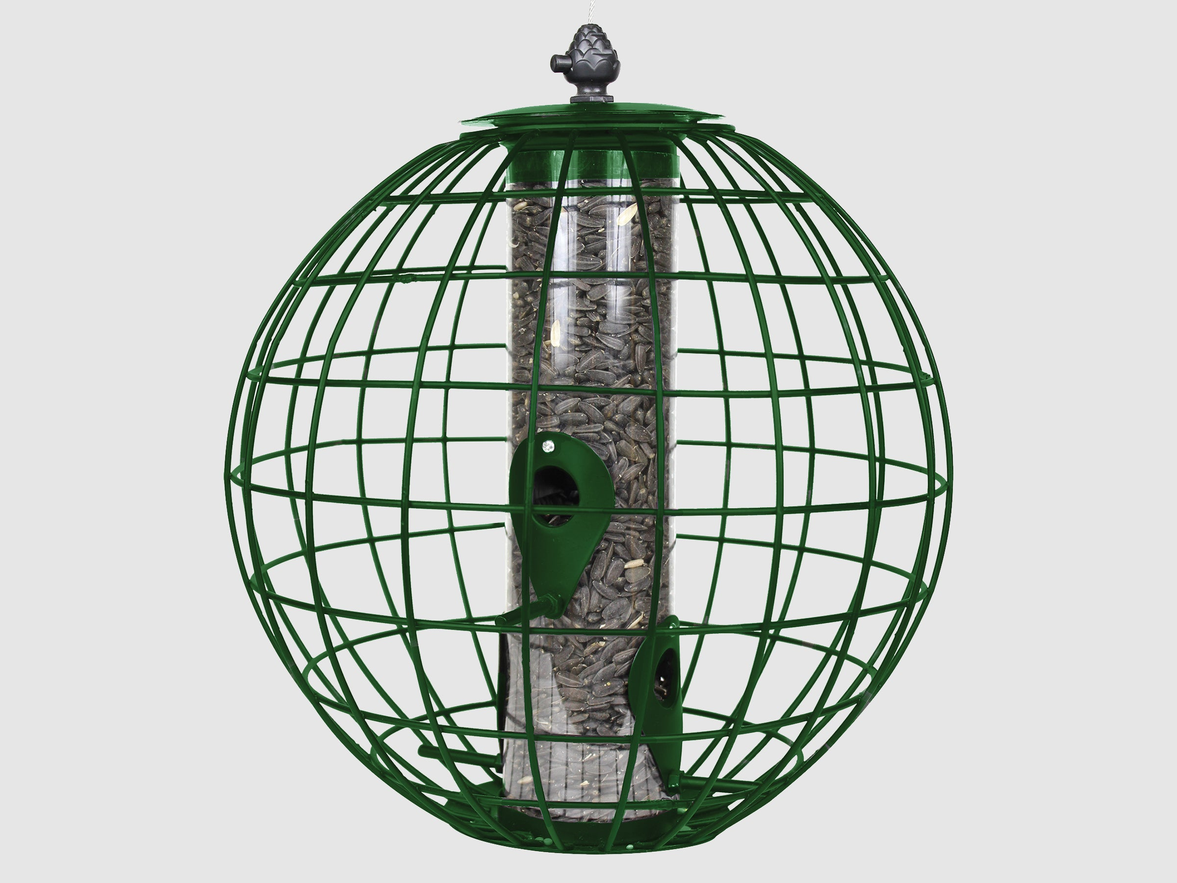 Squirrel resistant cage bird feeder