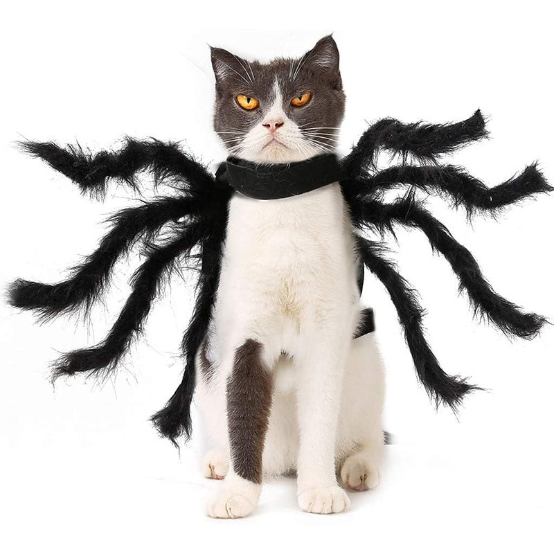 Halloween Spider Pets Outfits Cosplay