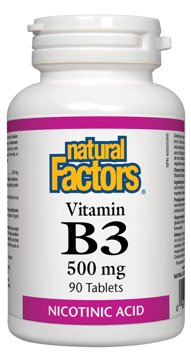 Natural Factors Vitamin B3 500mg 90 Tablets