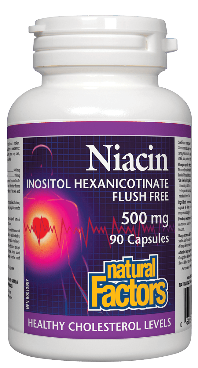 Natural Factors No Flush Niacin 500mg 90 Capsules