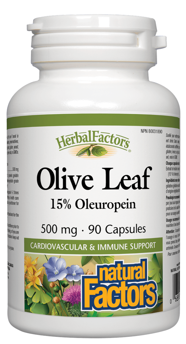 Natural Factors Olive Leaf Extract 500mg 90 Capsules