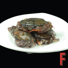 Load image into Gallery viewer, Vietnam Soft Shell Crab (Frozen)  越南軟殼蟹 (急凍) ~1KG (5-7 Pieces) - FEAST
