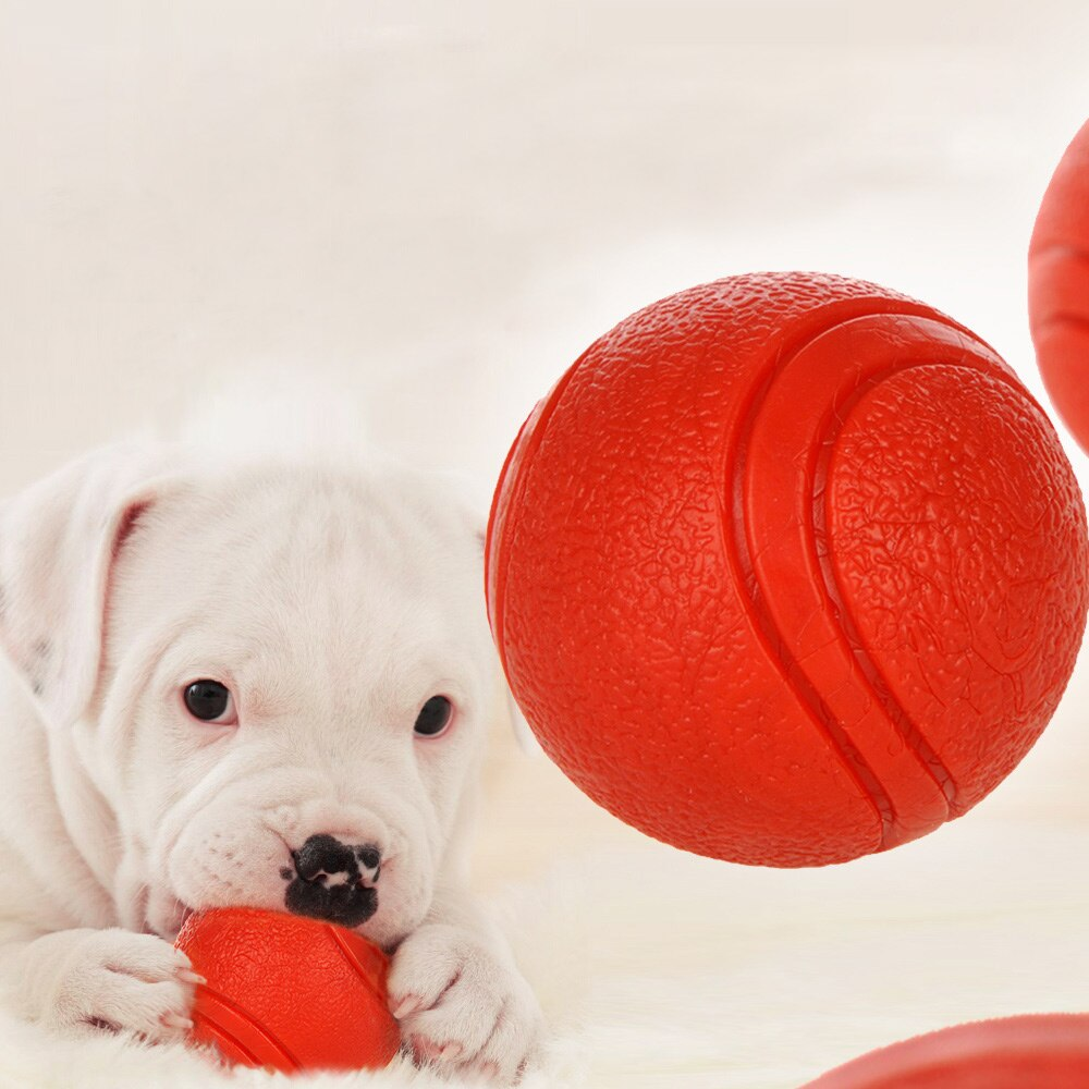 Dog Balls | Best Nontoxic Bite-resistant Rubber Ball - Wise Pets