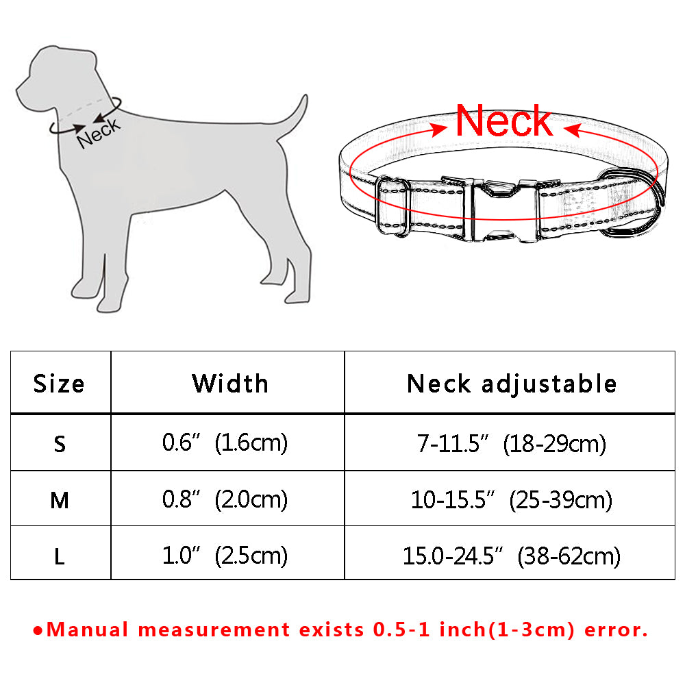 Cute and Cool Dog Collars - Wise Pets