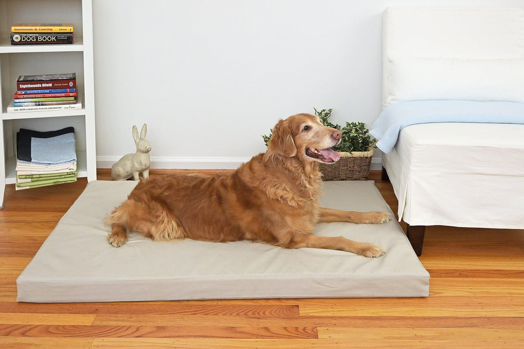 golden retriever on grey stone orthopedic dog bed