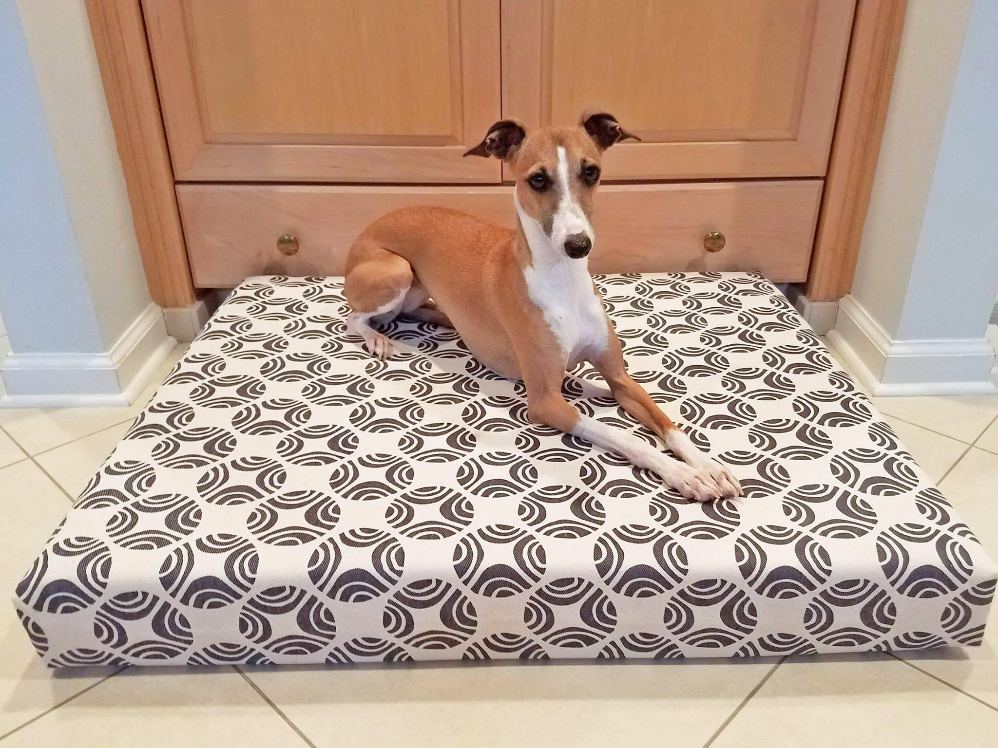 greyhound dog laying on organic orthopedic dog bed in white and brown picasso print