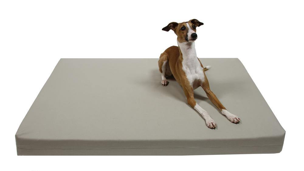 dog laying on organic cotton dog bed cover in stone canvas
