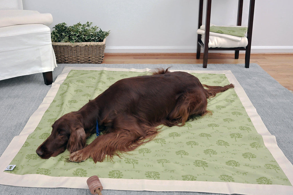 brown dog laying on green sage organic dog mat