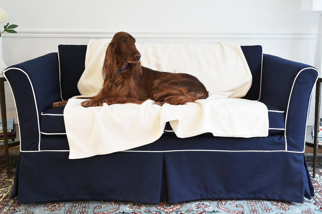 brown dog laying on blue sofa with natural cream fleece blanket