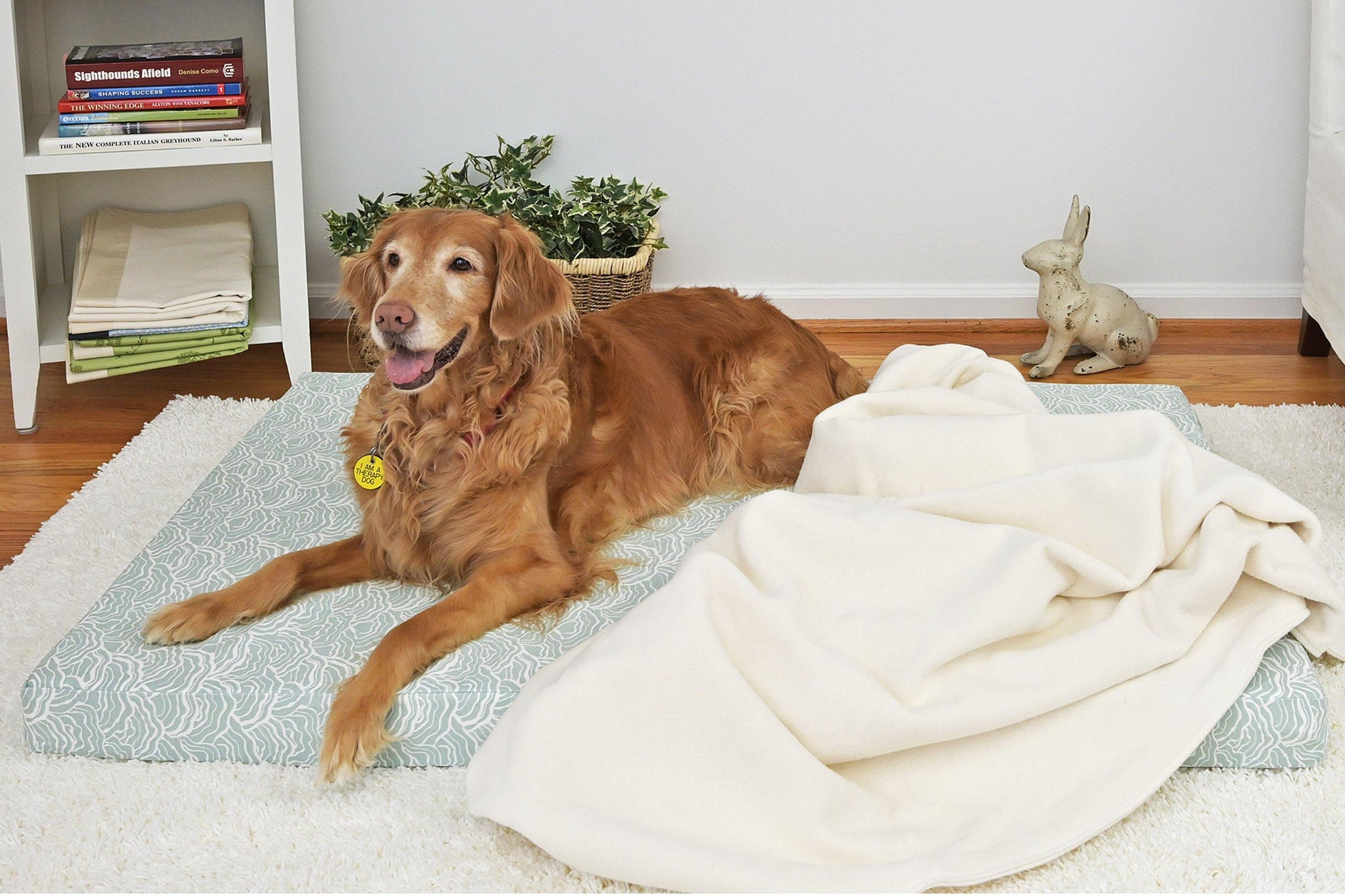 Organic Cotton Dog Bed Cover, Lichen