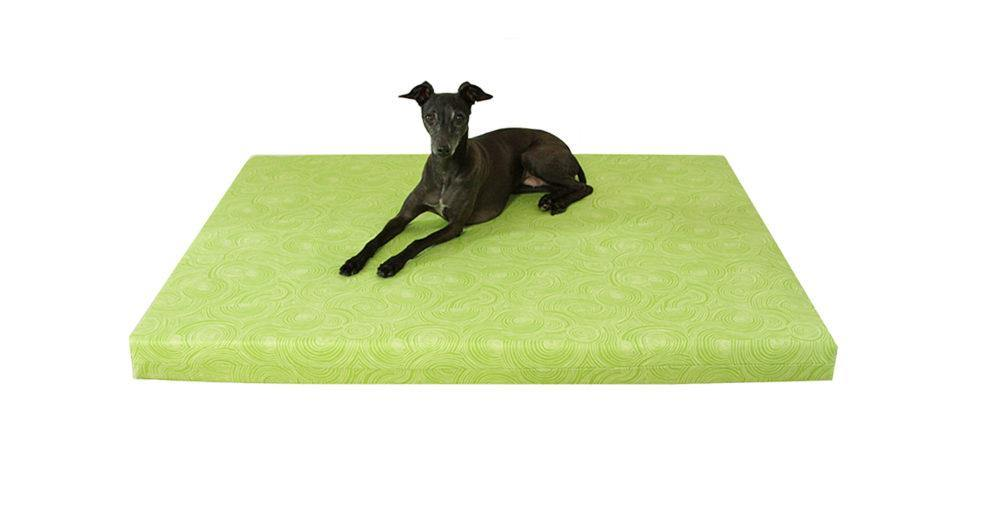 black greyhound dog laying on lime green patterned orthopedic dog bed