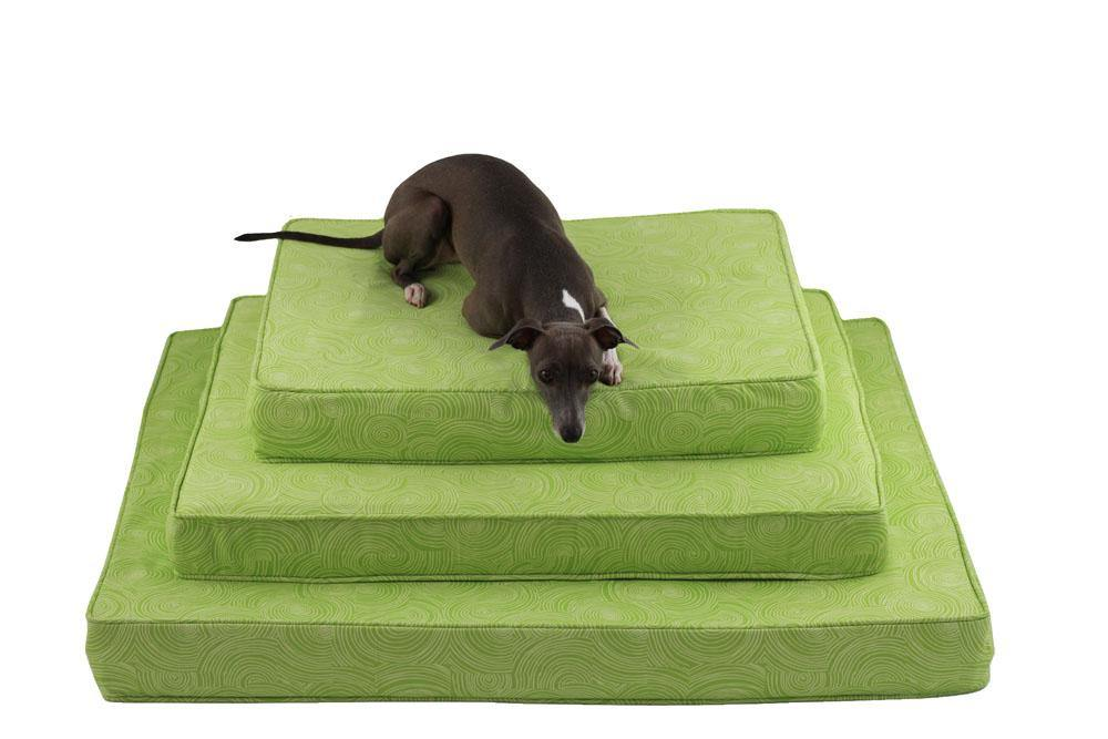 dog laying on three orthopedic dog beds in lime