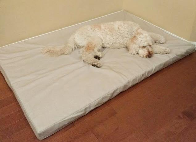 white dog laying on orthopedic dog bed in stone