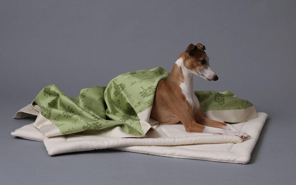 greyhound dog on natural fleece dog mat with green tree pattern blanket