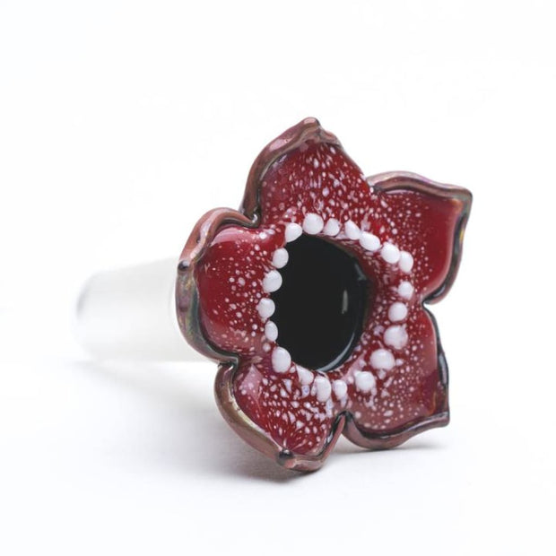 14mm Bowl - Stranger Flower On sale