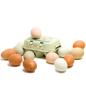 Organic Rookery Farm Eggs (pack of 6) - Lumberjack Supplies, Camberwell SE5