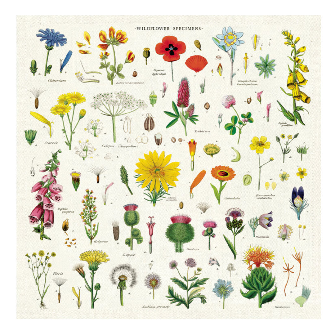 Vintage Wildflower Napkins