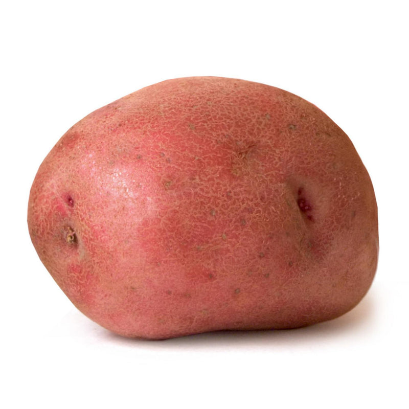 Potato, Red