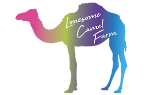 Lonesome Camel Farm