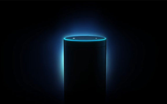 Is Amazon Alexa and the other Home Assistants the beginning of big brother?