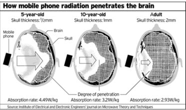 mobile phone radiation and the brain