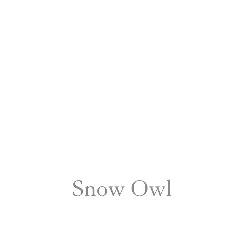 One Hour Ceramic - Snow Owl