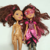 Two Ever After High Briar Beauty Dolls   (D03-10)