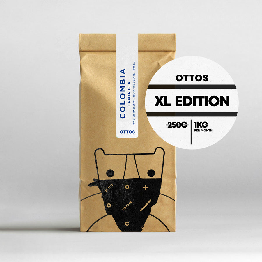 1 Year Subscription XL - 15% discount