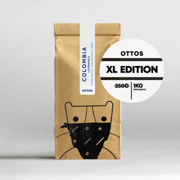 6 Month Subscription XL - 10% discount