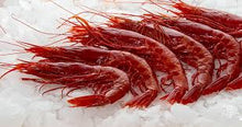 Load image into Gallery viewer, Frozen Carabinero Shrimp 2.77 lbs Pack